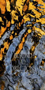 Beyond All Directions
