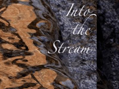 Into the stream