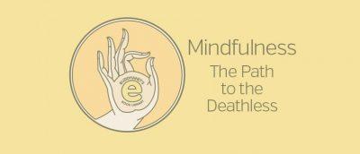 MINDFULNESS E-BOOKS