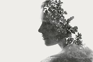 Mindfulness Of Mind [Audio]
