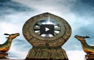 JOSEPH-GOLDSTEIN-–-FEAR-featured-image
