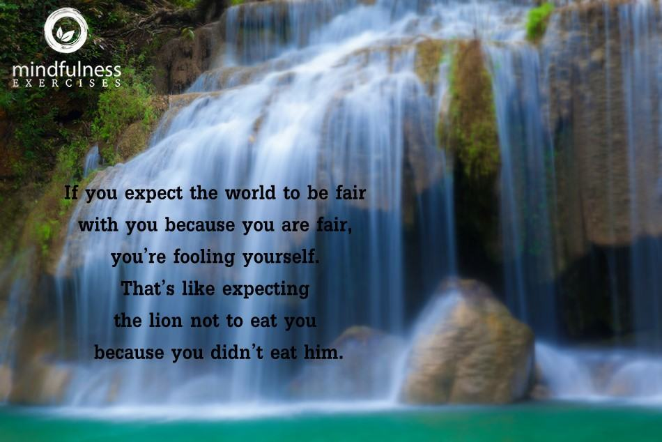 Mindfulness Quote and Image 47