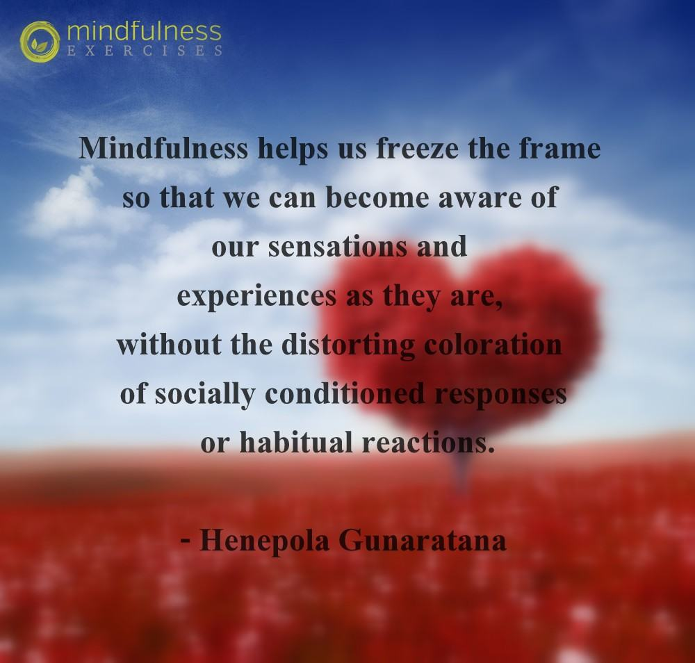 Mindfulness Quote and Image 54