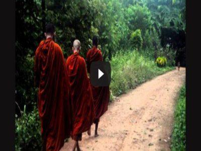 Thanissaro Bhikkhu & Just This Breath [Video]