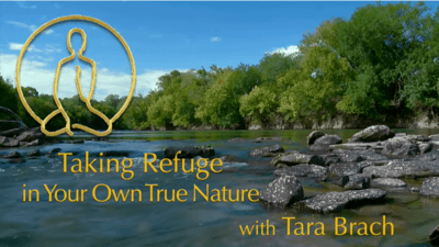 Taking Refuge in Your Own True Nature