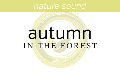 Nature Sounds: Autumn in the forest