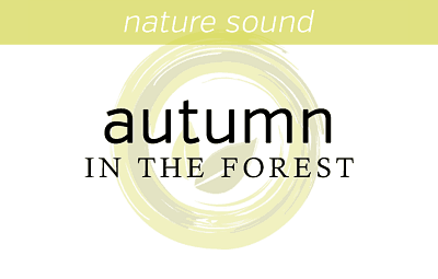 autumn-in-the-forest-fi2