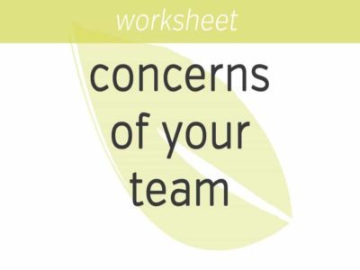 discovering the concerns of your team