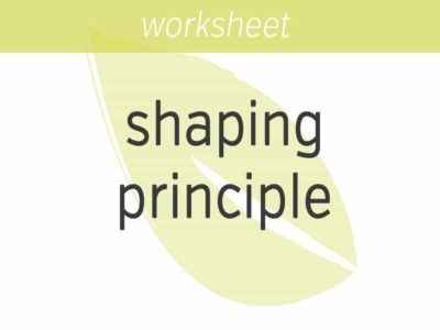 the shaping principle