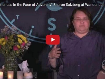 Lovingkindness In The Face Of Adversity [Video]