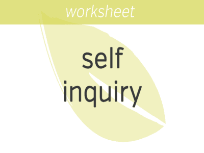 Self-Inquiry FI