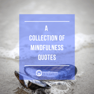 Collection Of Mindfulness Quotes