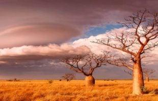 Mindfulness meditation