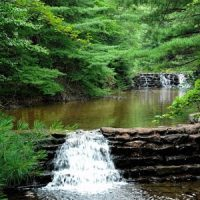 Nature: Babbling Brook