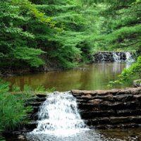Nature: Babbling Brook