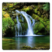 Nature: Tranquil Waterfall