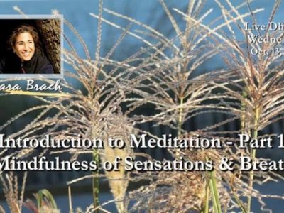 Mindfulness of Sensations and Breath