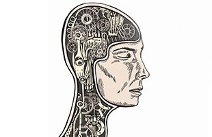 Hack Your Brain by Dan Harris