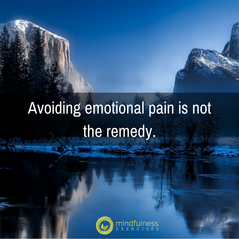 Avoiding emotional pain is not the remedy.