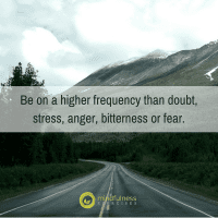 Be on a higher frequency than doubt, stress, anger, bitterness or fear.