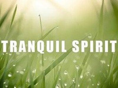 Tranquil Spirit Spiritual Sleep Music Calming Soft Music