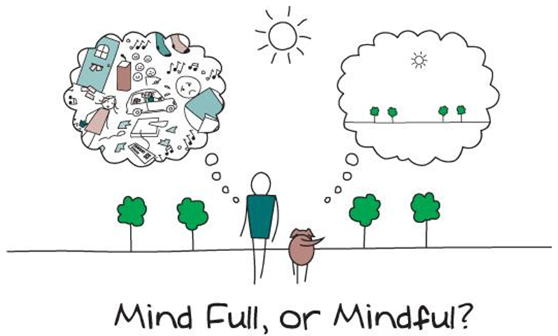 """Me Too"" In Popular Mindfulness Communities"