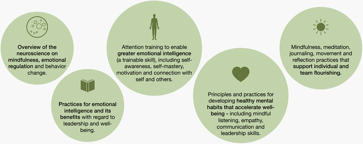 mindfulness workshops