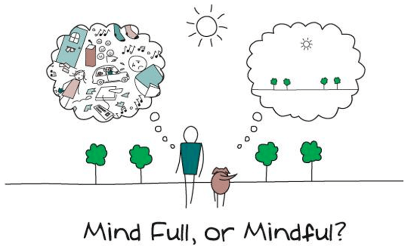 Mindfulness Of Your Blind Spots - Mind Full, or Mindful?