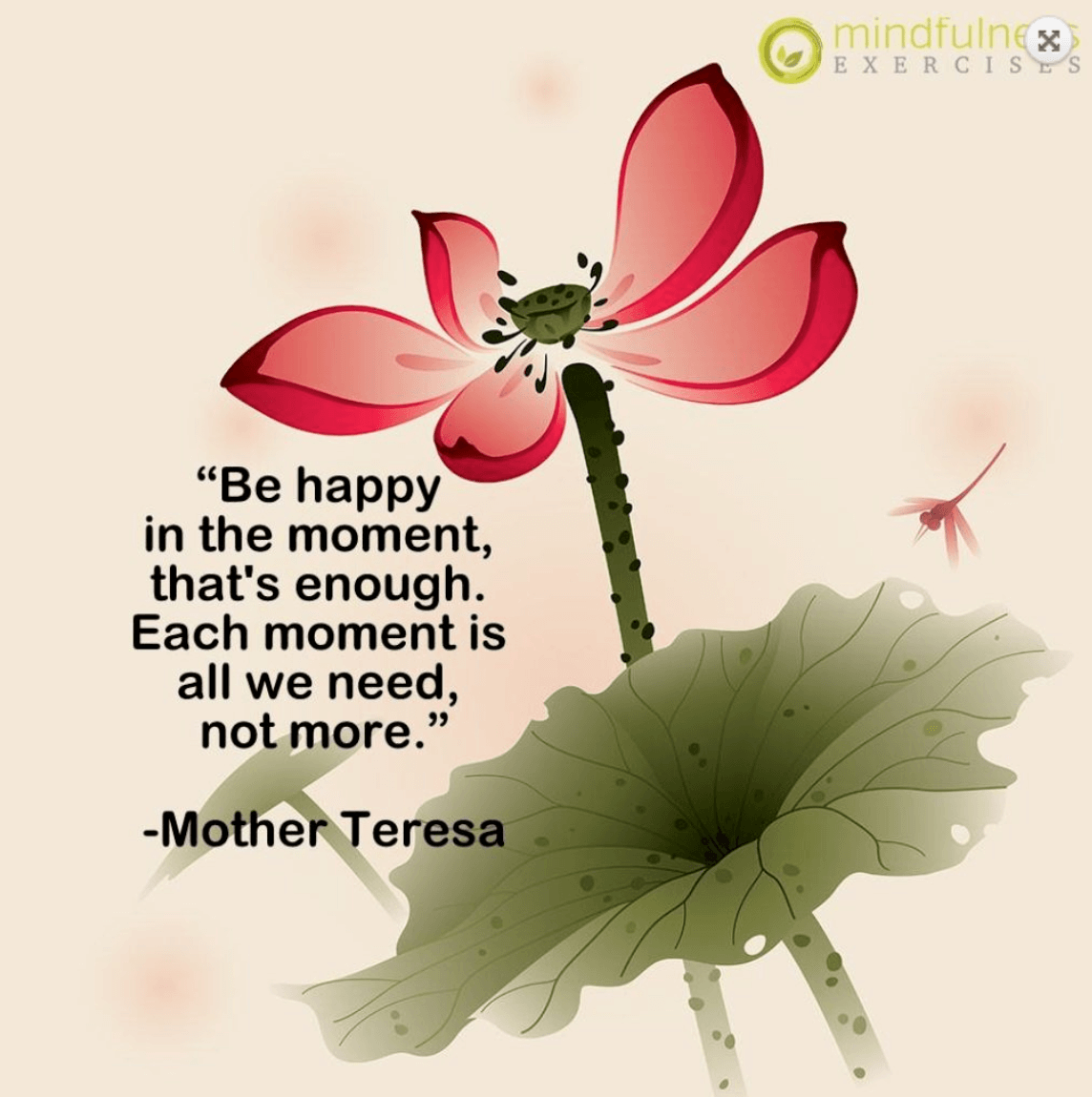 Short Mindfulness Quotes and Processes - Be Happy In The Moment