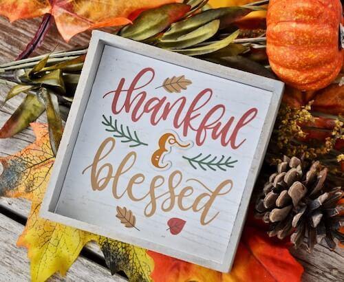 1. Gratitude and Generosity – with Tara Brach
