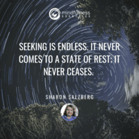 Seeking Is Endless Sharon Salzberg Inspirational Mindfulness Quotes