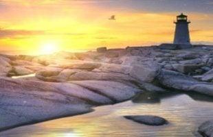 Free Guided Meditations & Mindfulness Talks | Mindfulness