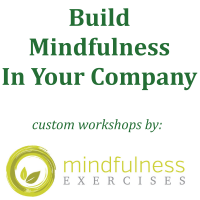 Professional Mindfulness Workshops