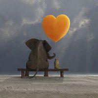 Increasing Loving Kindness