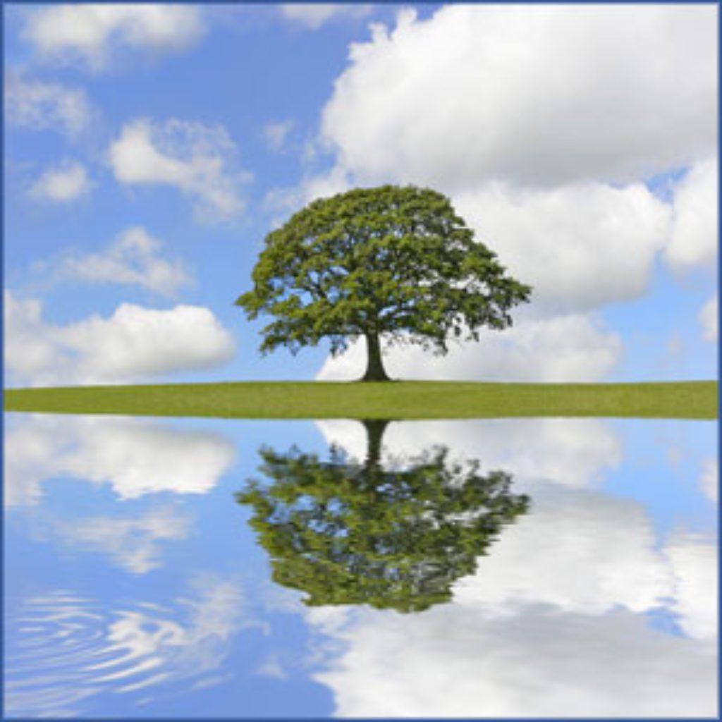 mindfulness practice: just like me