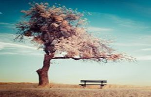 free mindfulness exercises